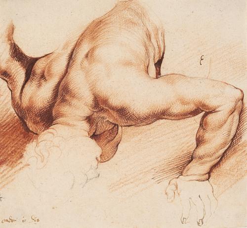 Wrestlers. Antique sculpture group. Lower figure (1628 - 1630)