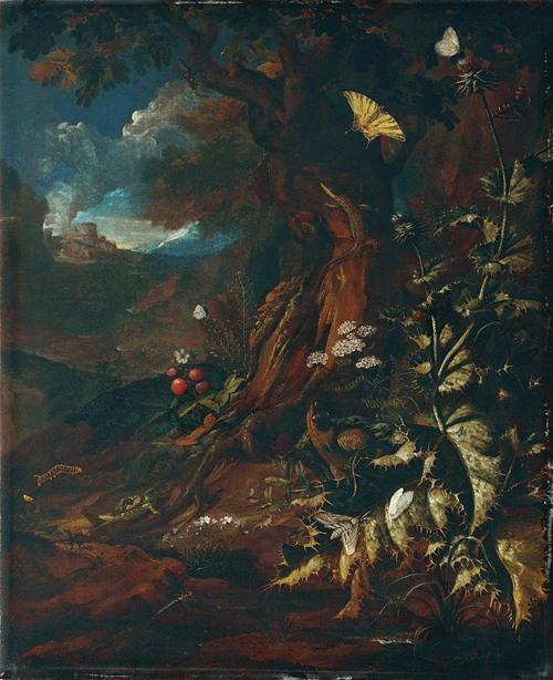 Landschaft mit Reptilien und Insekten (1730-740)