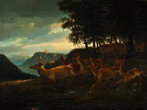 Stag In A Wood (1835)