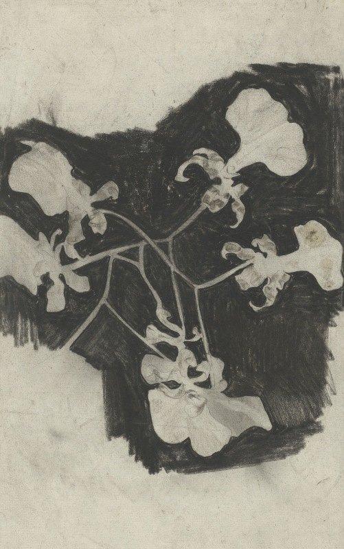 Carel Adolph Lion Cachet - Bloemstudie