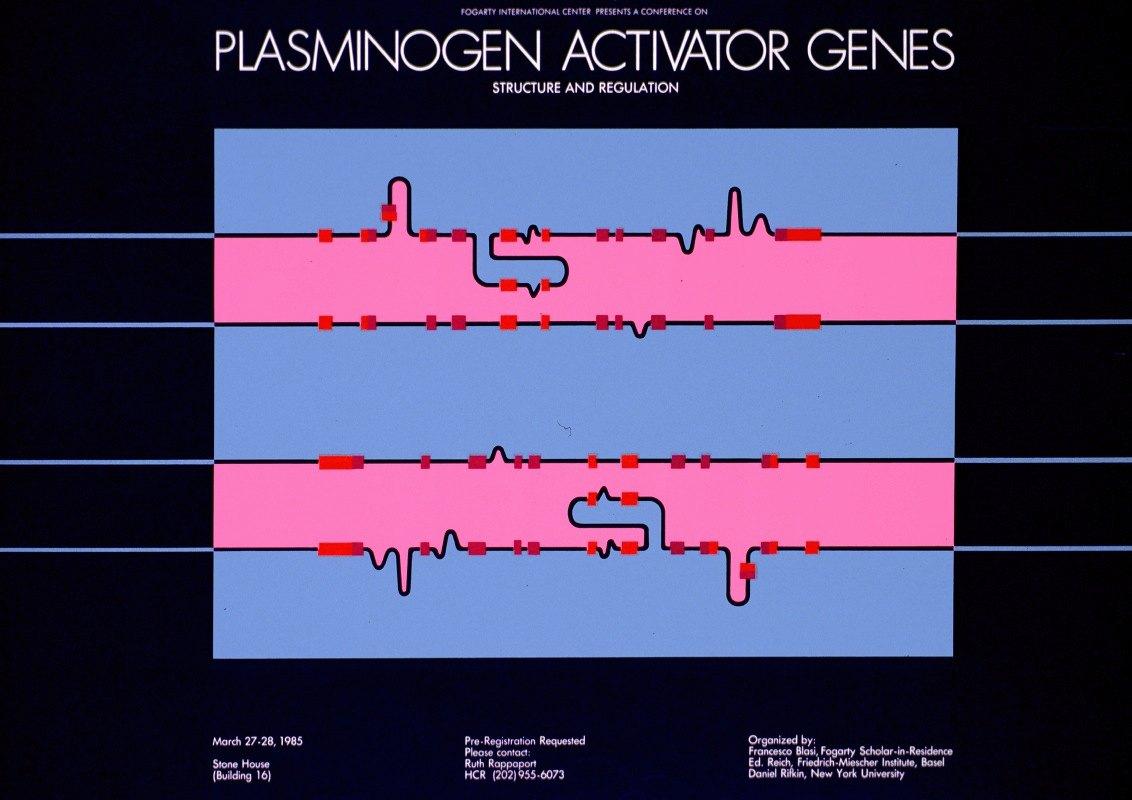 National Institutes of Health - Fogarty International Center presents a conference on plasminogen activator genes