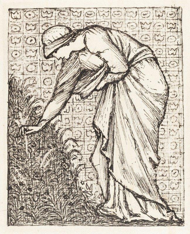 Sir Edward Coley Burne-Jones - Lady Picking Flowers