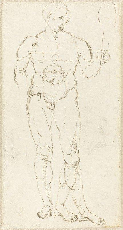 Albrecht Dürer - Male Nude Holding a Mirror (recto)