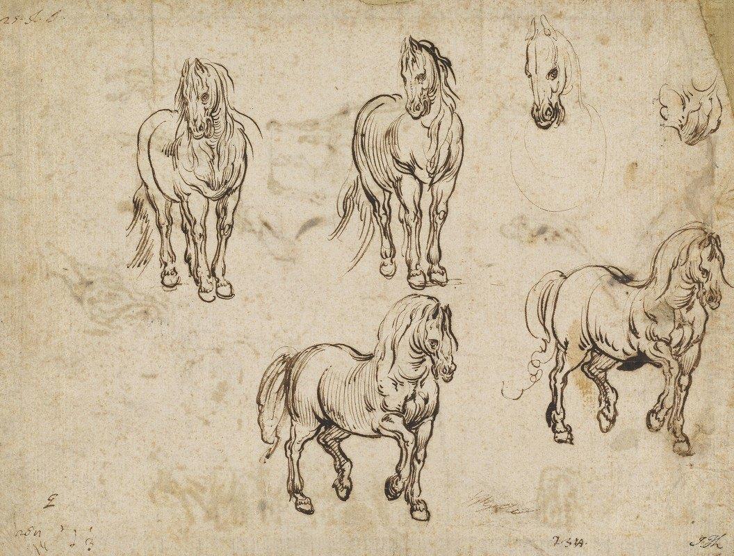 Jacques Callot - Studies of Horses (recto)