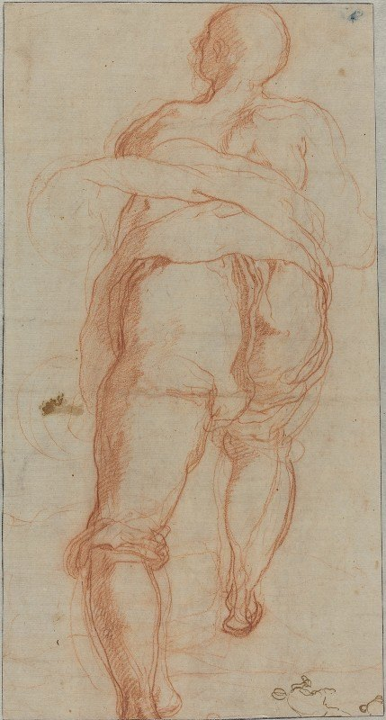 Taddeo Zuccaro - A Man Seen from Behind (verso)