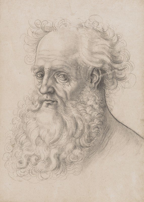 Unknown - Kopf eines bärtigen Mannes, nach links