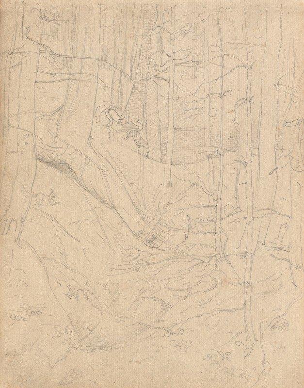 Franz Johann Heinrich Nadorp - Album with Views of Rome and Surroundings, Landscape Studies, page 01a: Roman Landscape