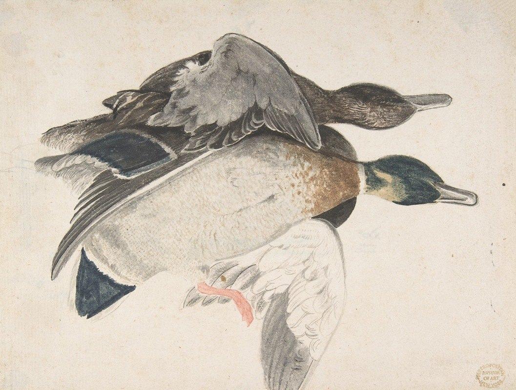 Count Giorgio Durante - Two Dead Ducks
