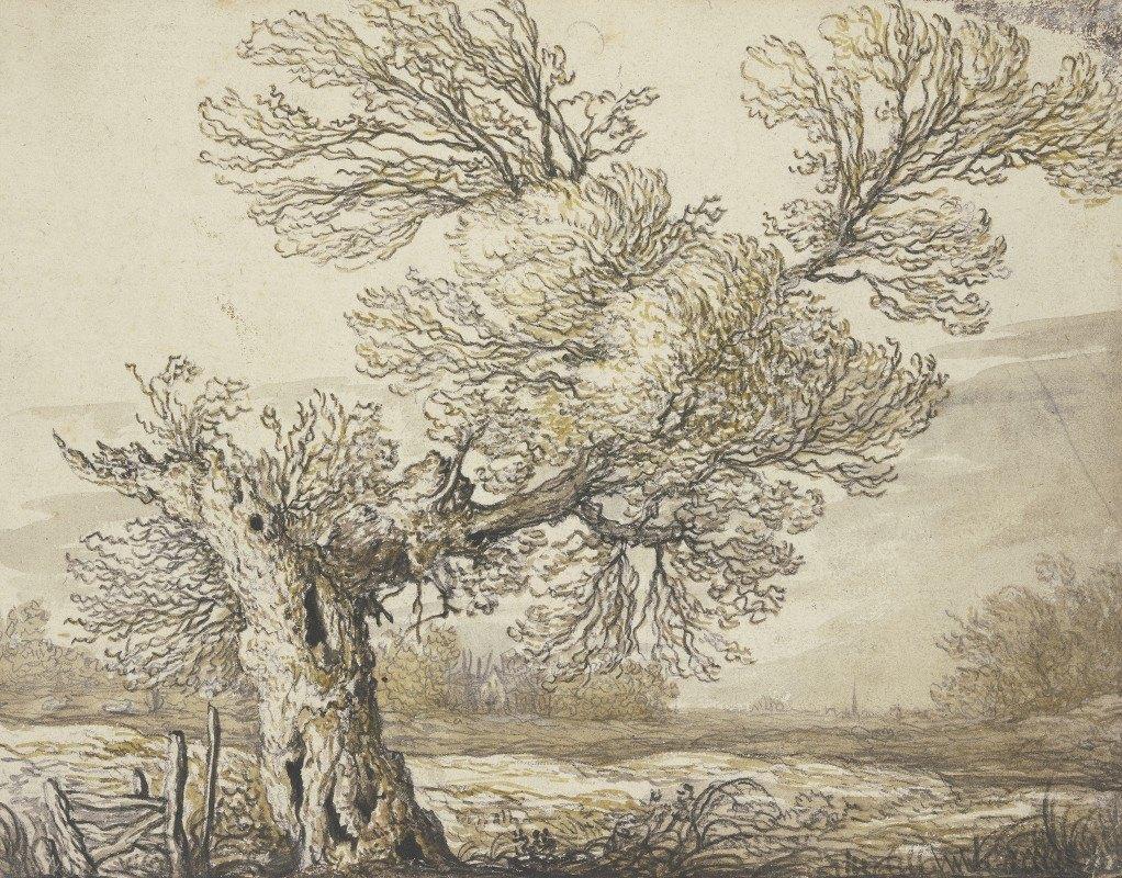 Aelbert Cuyp - Landscape near Dordrecht