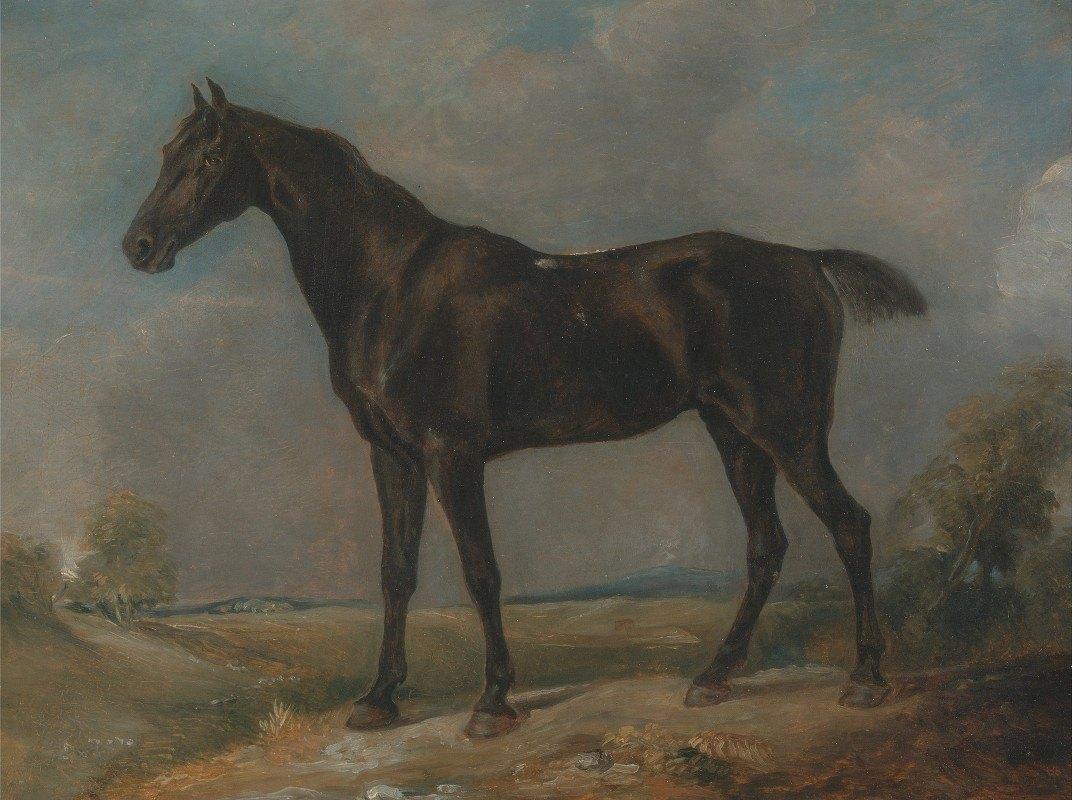 John Constable - Golding Constable's Black Riding-Horse