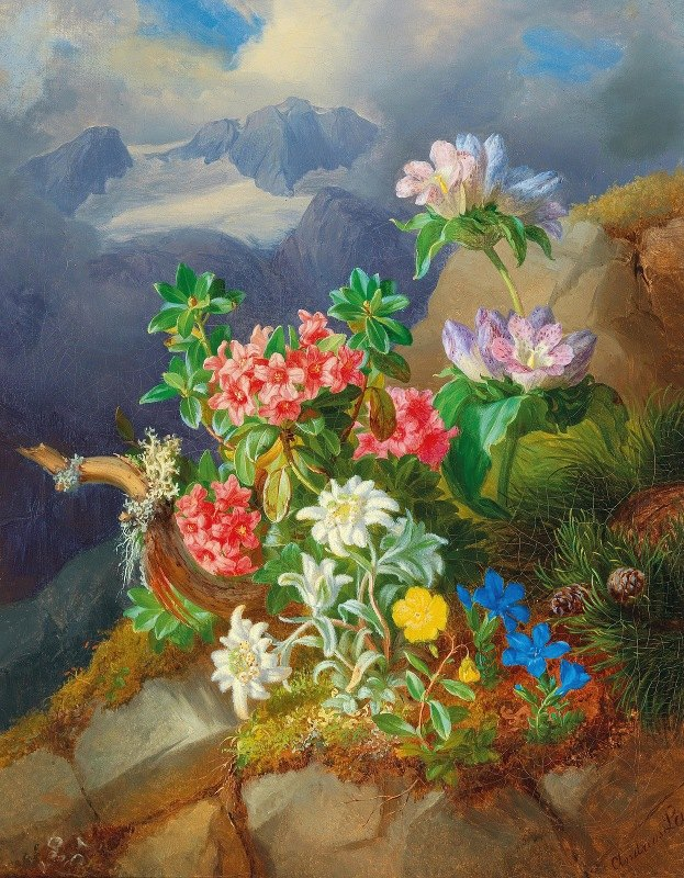 Andreas Lach - Alpine flowers