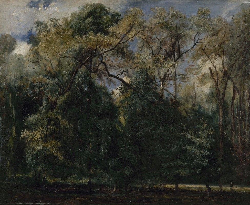 Paul Huet - Les ormes de Saint-Cloud