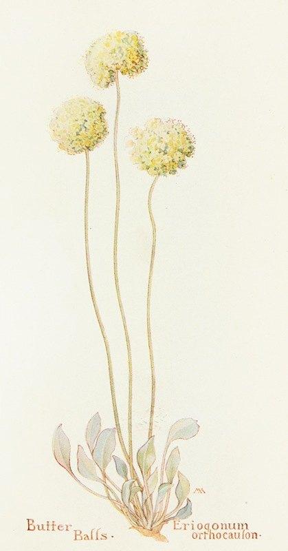 Margaret Armstrong - Butter Balls