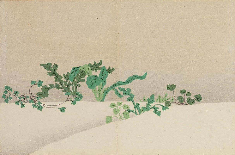 Kamisaka Sekka - Seven Herbs of Early Spring (Nanagusa)