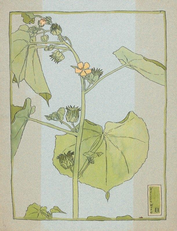 Hannah Borger Overbeck - Velvet Weed