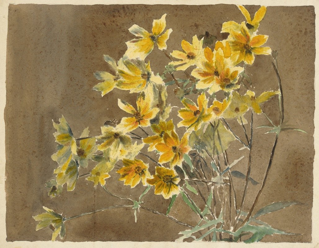 Hannah Borger Overbeck - Yellow and Orange Flower.