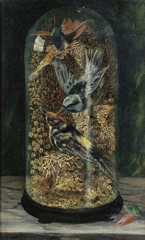Arthur H. Davis - Stuffed Birds In A Dome