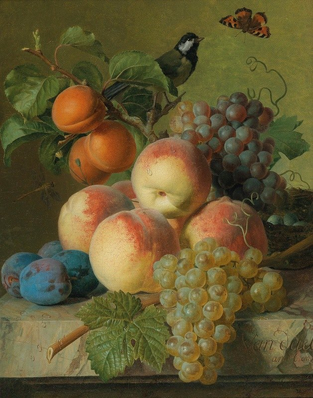 Jan Frans van Dael - Still life of peaches, grapes and plums on a stone ledge with a bird and a butterfly