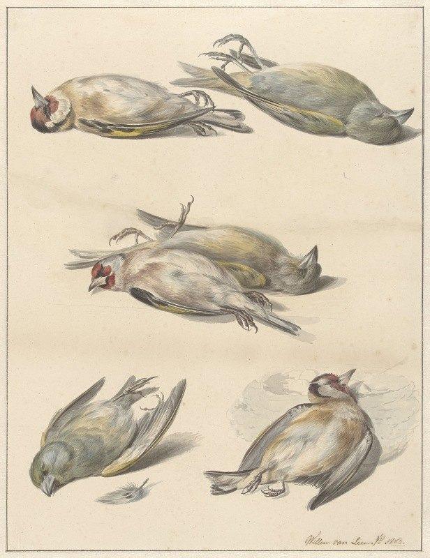 Willem van Leen - Zes dode vogeltjes