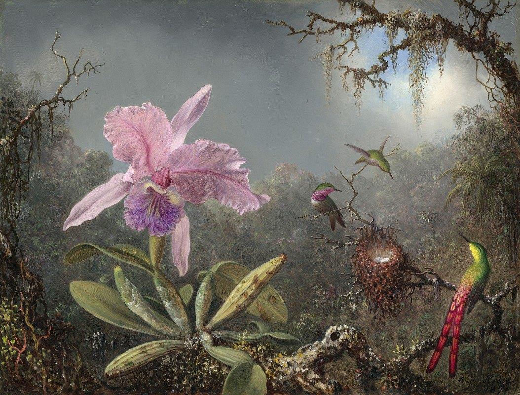 Martin Johnson Heade - Cattleya Orchid and Three Hummingbirds