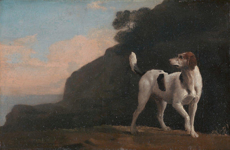 George Stubbs - Foxhound