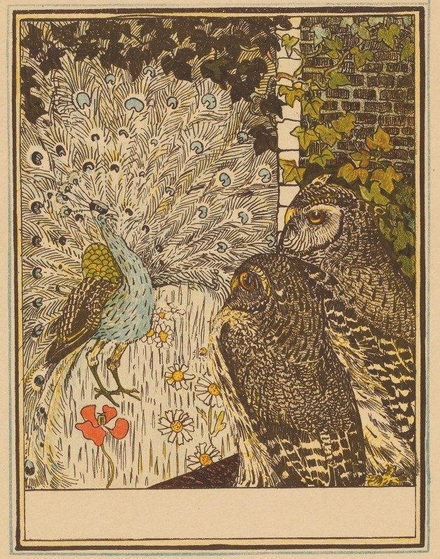 Theo van Hoytema - Peacock And Two Owls