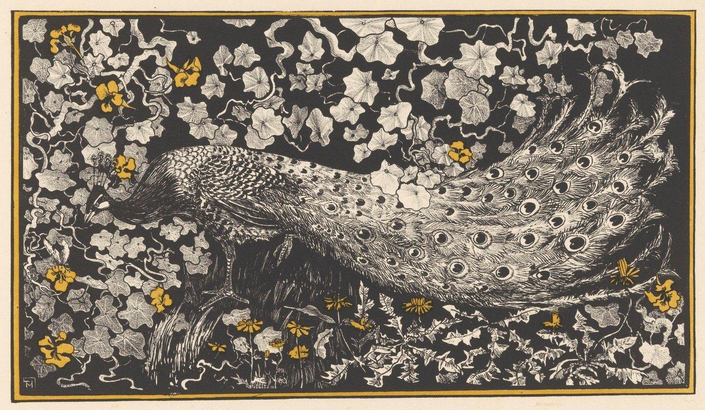 Theo van Hoytema - Peacock