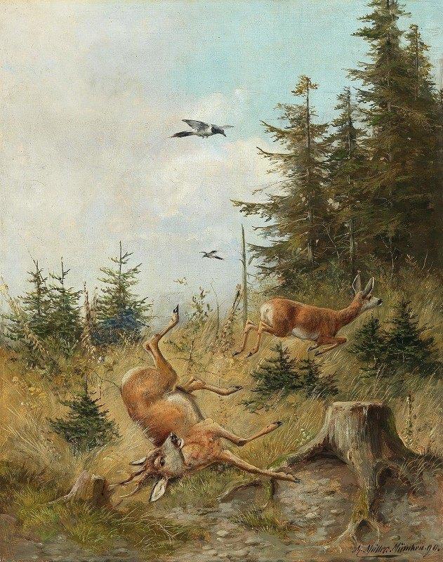 Moritz Müller - The Hunt