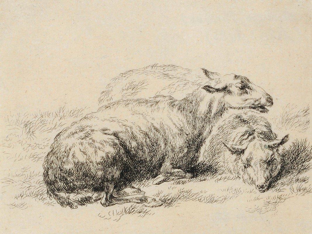 Nicolaes Pietersz. Berchem - Zwei liegende Schafe