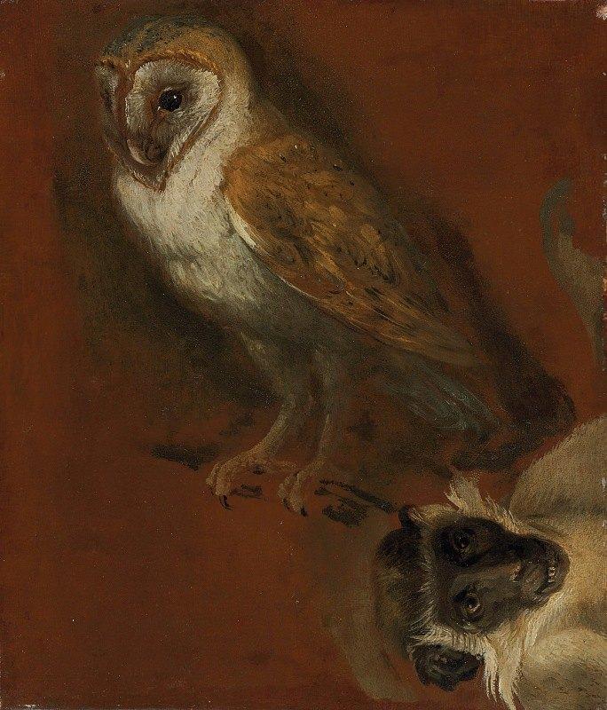 Alexandre François Desportes - Study of an owl, with a fragmentary study of a monkey