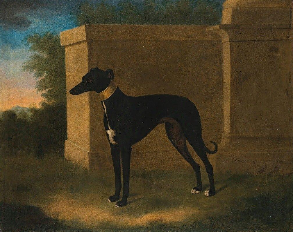 John Wootton - Portrait Of A Greyhound, Called Pompon