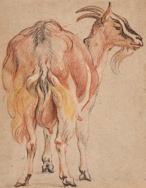 Jacob Jordaens - Goat