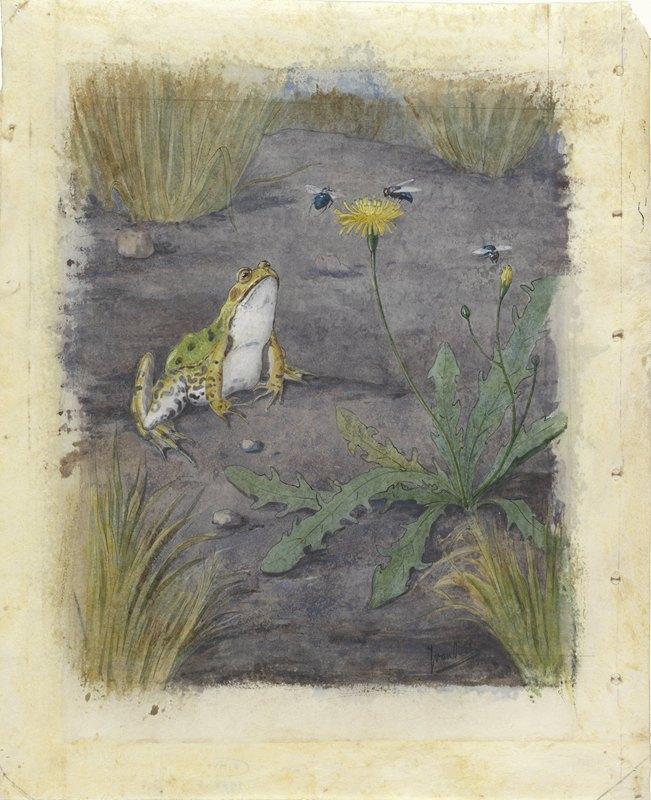 Jan van Oort - Frog by a Dandelion with Flies