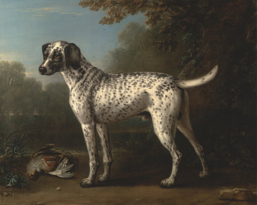 John Wootton - A Grey Spotted Hound