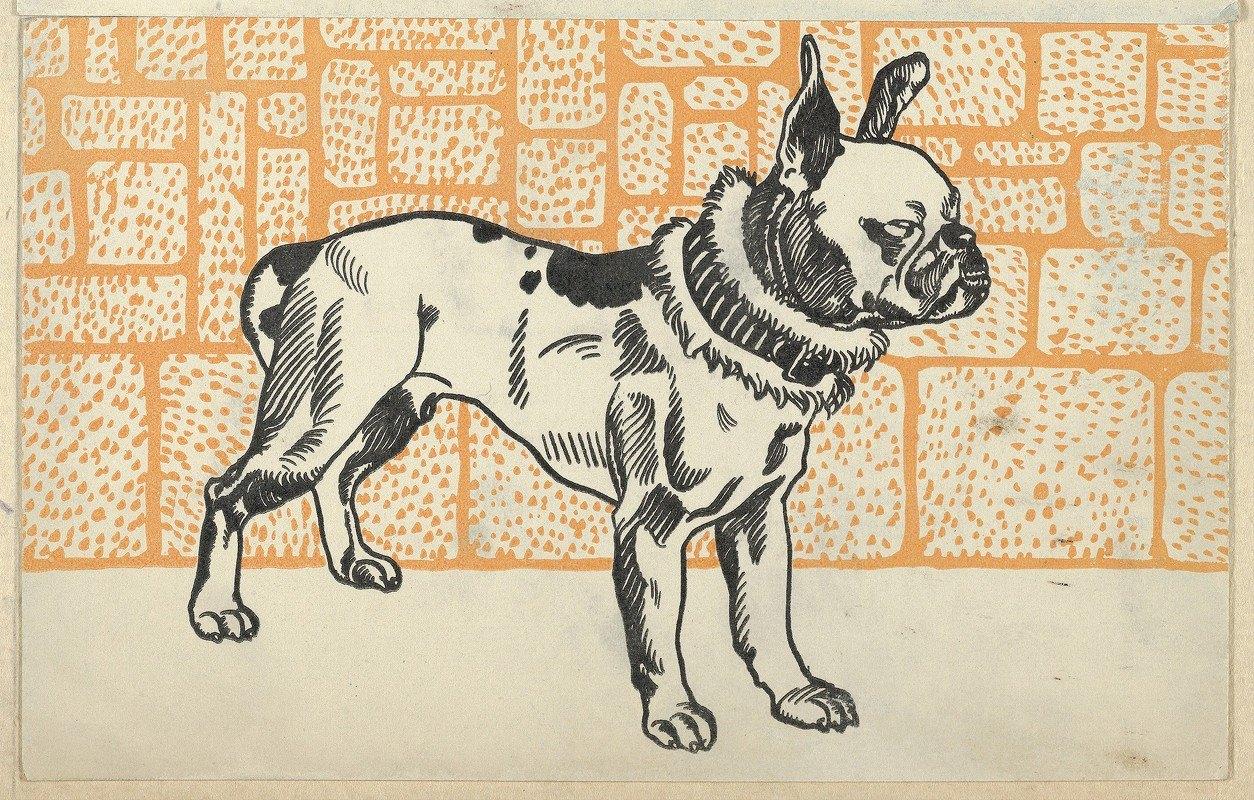 Moriz Jung - Pitbull Terrier