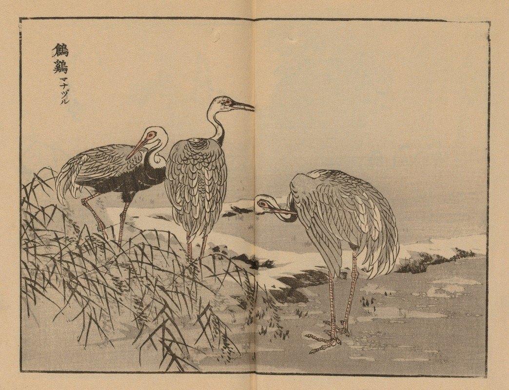 Kōno Bairei - Bairei gafu, Pl.42