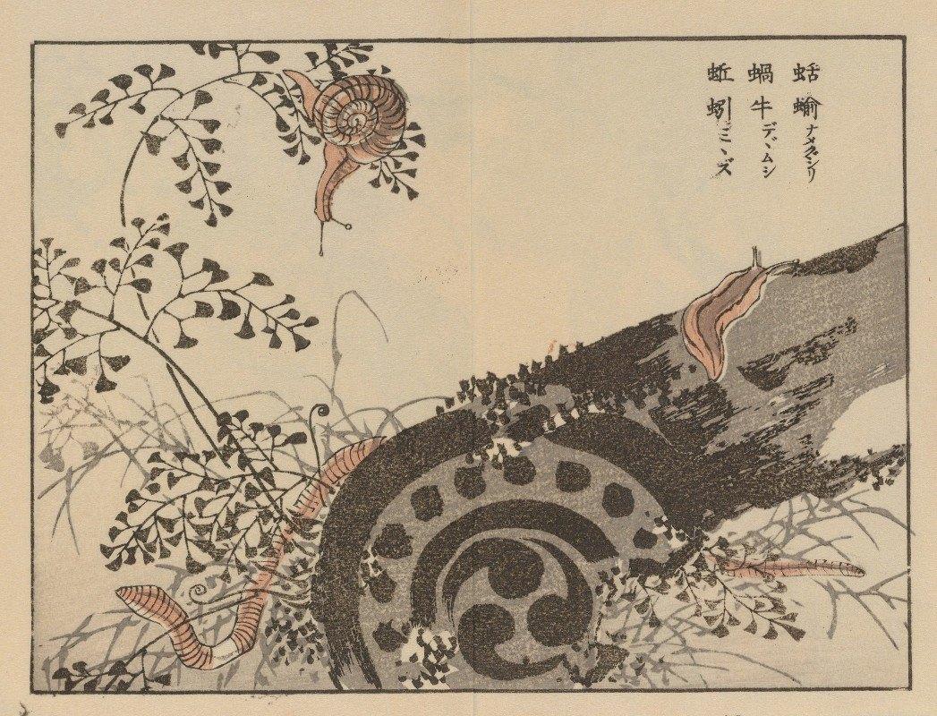 Kōno Bairei - Bairei gafu, Pl.56