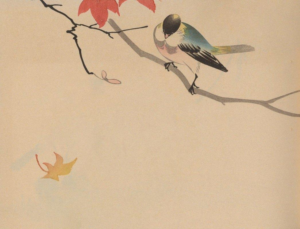 Jirō Takeuchi - Hōgajō, Pl.09
