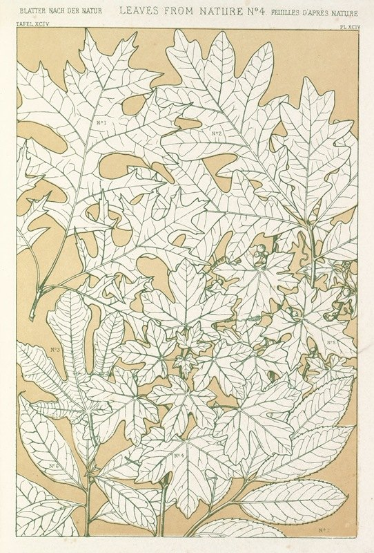 Owen Jones - Leaves from Nature No.4