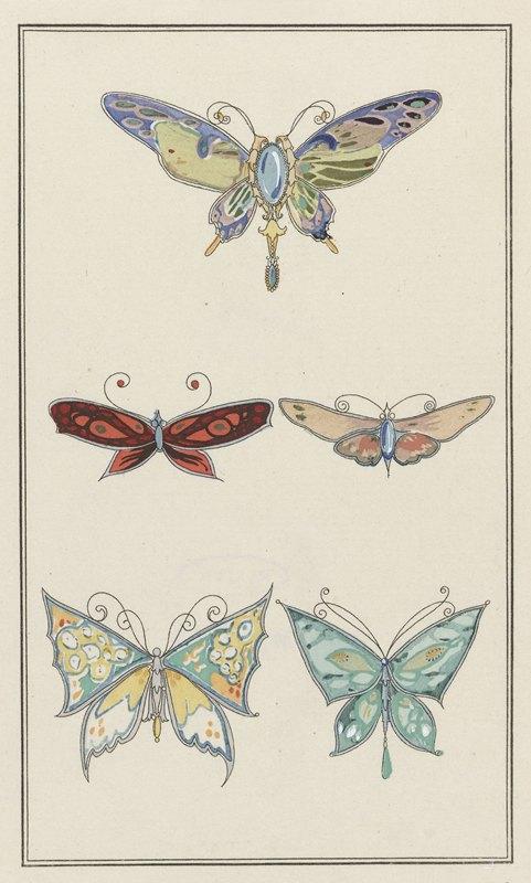Anonymous - Papillons naturels montés